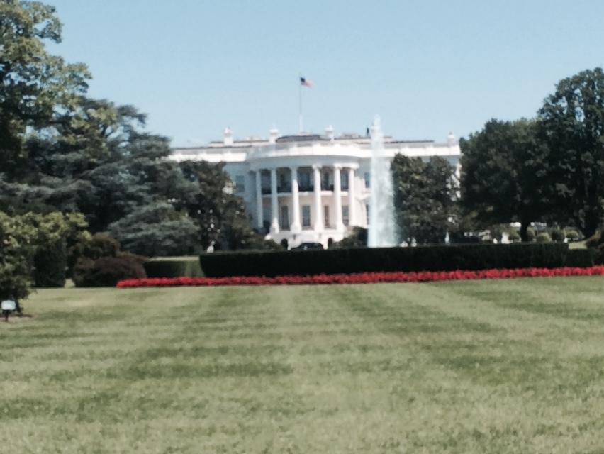 фото Белый дом